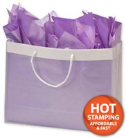 Bags, Clear Frosted High Density Euro Shoppers, 16 x 6 x 12