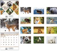 2020 N. American Wildlife Calendar - Spiral French