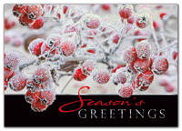Sugar Berries Holiday Cards