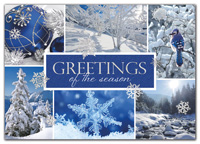 Snow Beauty Holiday Cards