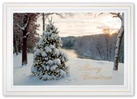 At First Light Christmas Cards