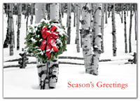 Birch Grove Holiday Cards-HP02303