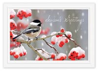 Tweet Greetings Holiday Cards